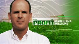 The Profit: Marijuana Millions