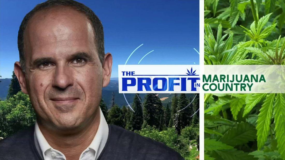 The Profit in Marijuana Country